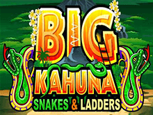 Играть в Big Kahuna Snakes and Ladders в клубе Вулкан